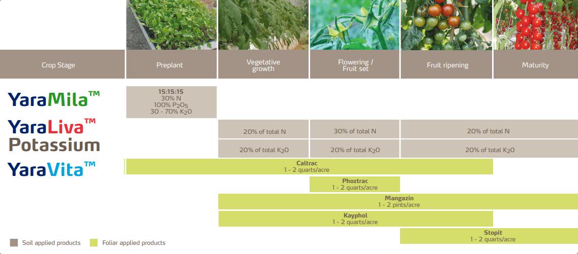 Tomato Crop Fertilizer Program Yara United States