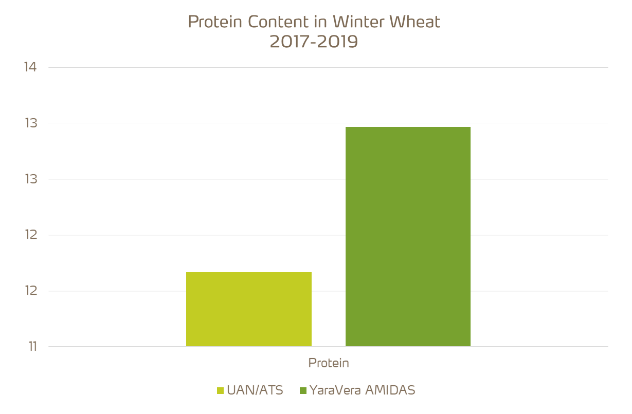 amidas provides higher protein content on wheat